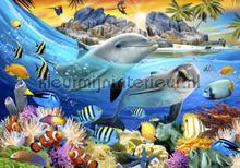 Dolphins smiling in the sea fotomurais Kleurmijninterieur selva