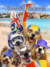 Dogs at bondi beach fototapeten Kleurmijninterieur weltraum