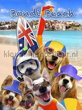 Dogs at bondi beach fotomurali Kleurmijninterieur sport