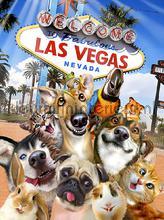Dogs in Las Vegas fotomurali Kleurmijninterieur sport