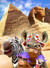 Animals in Egypt fotomurais Kleurmijninterieur selva