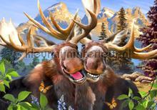 Reindeers smiling fotomurali Kleurmijninterieur sport
