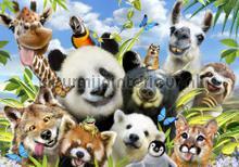 Panda and friends fototapeten Kleurmijninterieur weltraum