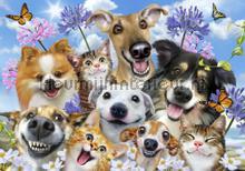 Funny doggies fotomurali Kleurmijninterieur sport