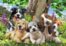 Sweet doggies fototapeten Kleurmijninterieur weltraum