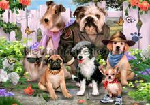 Classy dogs photomural Kleurmijninterieur world maps