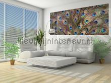 107575 papier murales Kleurmijninterieur PiP studio wallpaper