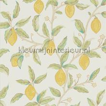 Lemon tree bay leaf wallcovering Morris and Co Vintage- Old wallpaper