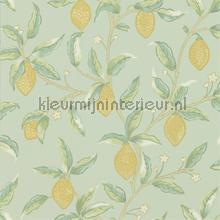 Lemon tree sage wallcovering Morris and Co Vintage- Old wallpaper