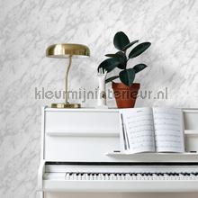 Marmer grijze aders wallcovering Esta home Wallpaper creations