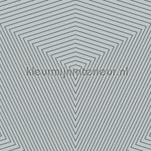 3d driehoeks diepte tapet Kleurmijninterieur All-images