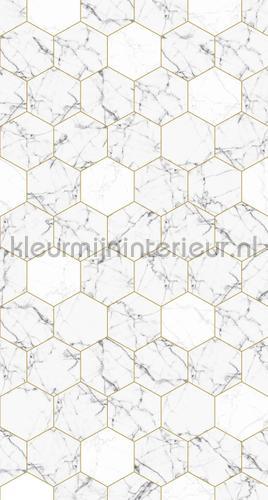 Hexagon motif marmer fotomurales 156-158955 Moderno - Abstracto Esta home