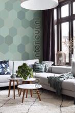 Hexagon motif fotomurales 156-158958 Moderno - Abstracto Esta home