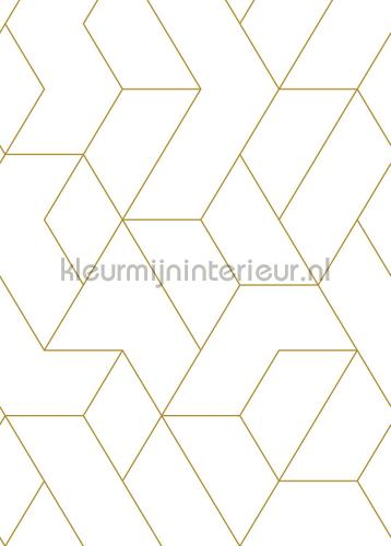 Graphic lines fotomurales 156-158962 Moderno - Abstracto Esta home