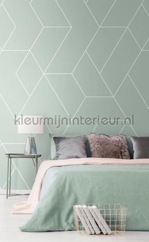 Graphic lines fotomurales 156-158963 Moderno - Abstracto Esta home