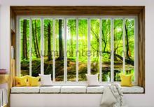 Sunny forest seen though window fotomurais Kleurmijninterieur Todas-as-imagens