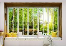 Green forest seen though window fotomurais Kleurmijninterieur Todas-as-imagens