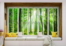 Forest seen through window fotomurais Kleurmijninterieur Todas-as-imagens