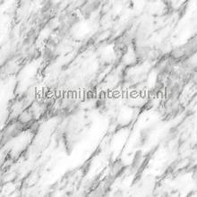Marmer grijze aders behang Esta home Black and White 155-139119