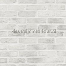 Bakstenen muur glad lichtgrijs tinten behang Esta home Stenen