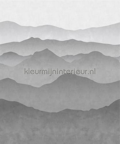 fotomurales 155-158939 Moderno - Abstracto Esta home
