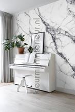 112773 fotomurales Esta home PiP studio wallpaper