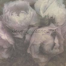 Grote rozen behang Kleurmijninterieur romantisch