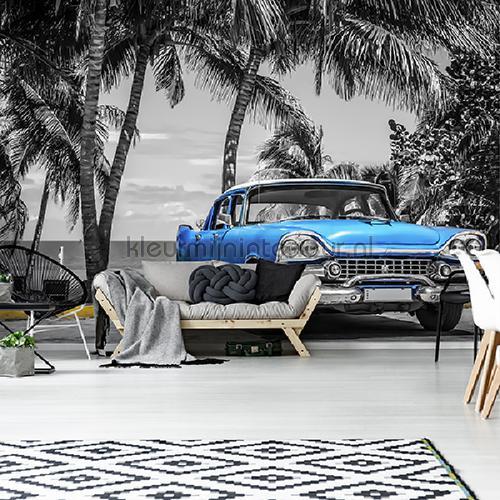 Bleu cabriolet op palmbeach fotomurali 13335VE-L Auto - Trasporto Kleurmijninterieur