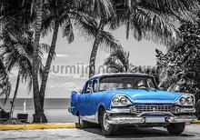 Bleu cabriolet op palmbeach fototapet Kleurmijninterieur teenagere