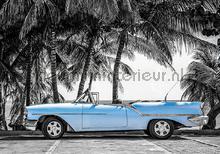 Blue cabriolet fototapet Kleurmijninterieur teenagere