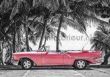 Pink cabriolet fototapet Kleurmijninterieur teenagere