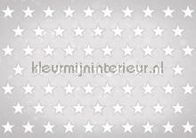 Stars white on grey background fototapeten Kleurmijninterieur weltraum