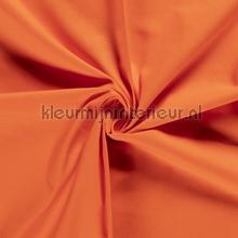 110550 gordijnen Kleurmijninterieur Scion