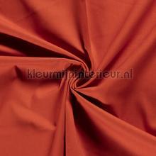 110551 gordijnen Kleurmijninterieur Scion