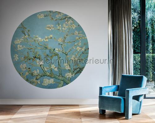 Almond Blossom fotomurales 300331 Circles BN Wallcoverings