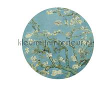 Almond Blossom fotomurais BN Wallcoverings Circles 300331