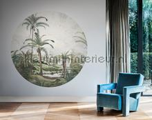 Dark Ferns fototapet BN Wallcoverings alle billeder