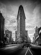 Vertical city papier murales Kleurmijninterieur tout images