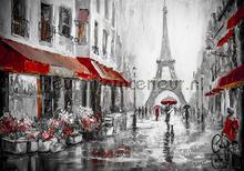 Paris in grey and red colors fototapeten Kleurmijninterieur weltkarten