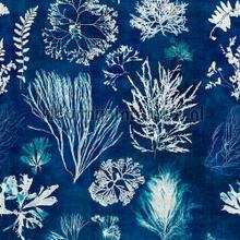 Algae navy blue papier murales Mindthegap Collectables 2019 WP20297