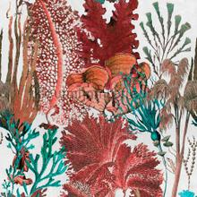 Coral reef papier murales Mindthegap Collectables 2019 WP20299