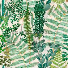 Green sanctuary papier murales Mindthegap Collectables 2019 WP20319