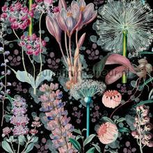 Garden of eden papier murales Mindthegap Collectables 2019 WP20324