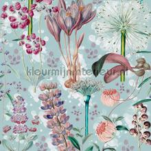 Garden of eden aquamarine papier murales Mindthegap Collectables 2019 WP20325