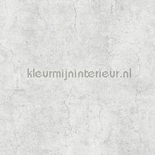 106662 behang Dutch Wallcoverings Modern Abstract