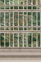 Fairyland papier murales Mindthegap Compendium WP20455