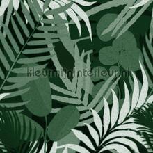 Jardin del sol green papier murales Mindthegap Compendium WP20492