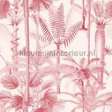 Palmera cubana pink papier murales Mindthegap PiP studio wallpaper