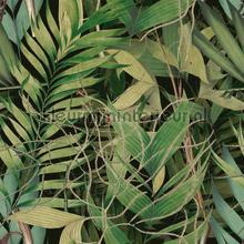 Exotic garden papier murales Mindthegap Compendium WP20515