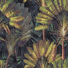 Traveller-s palm sunset papier murales Mindthegap PiP studio wallpaper